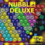 Nubble! Deluxe maths game software